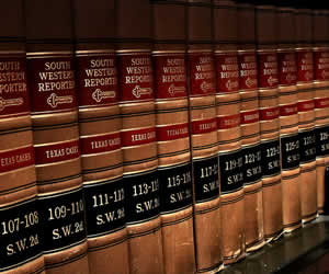 Nevada Corporate Statutes