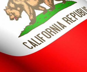 California Limited Liability Company Questionnaire