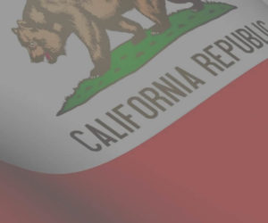 Same Day California Secretary of State LLC Name Reservation Form